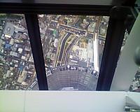 Skytree7