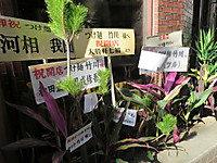 Takekawahana